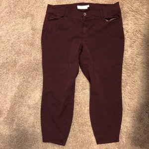 Torrid maroon chino pants